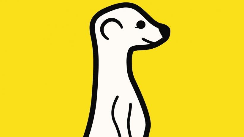 Meerkat App Twitter Live Stream